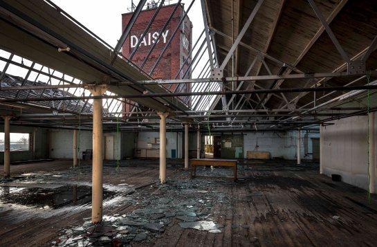 daisy mill blog